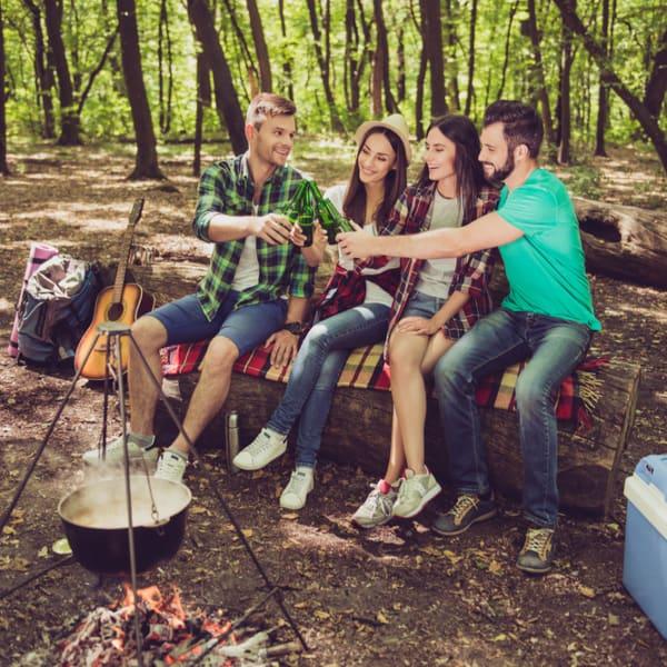4 adults enjoying a campfire outdoors