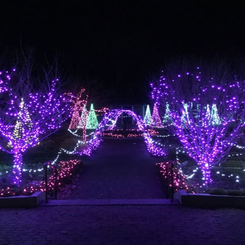 Looking for a fun night out with family or friends? Winter Reimagined at Tower Hill Botanic Garden in Bolyston, MA is a wonderful seasonal activity!