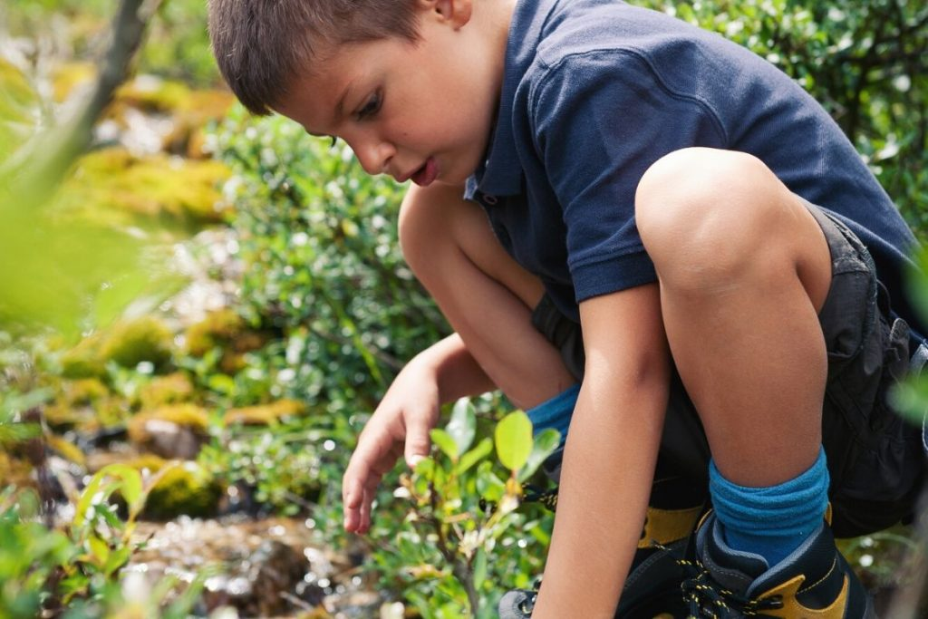 young boy looking for letterboxing treasure in the ground