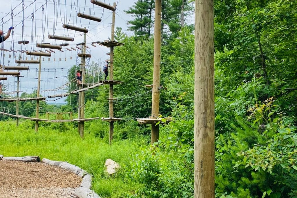 Tall wooden poles with various rope courses surrounded by trees
