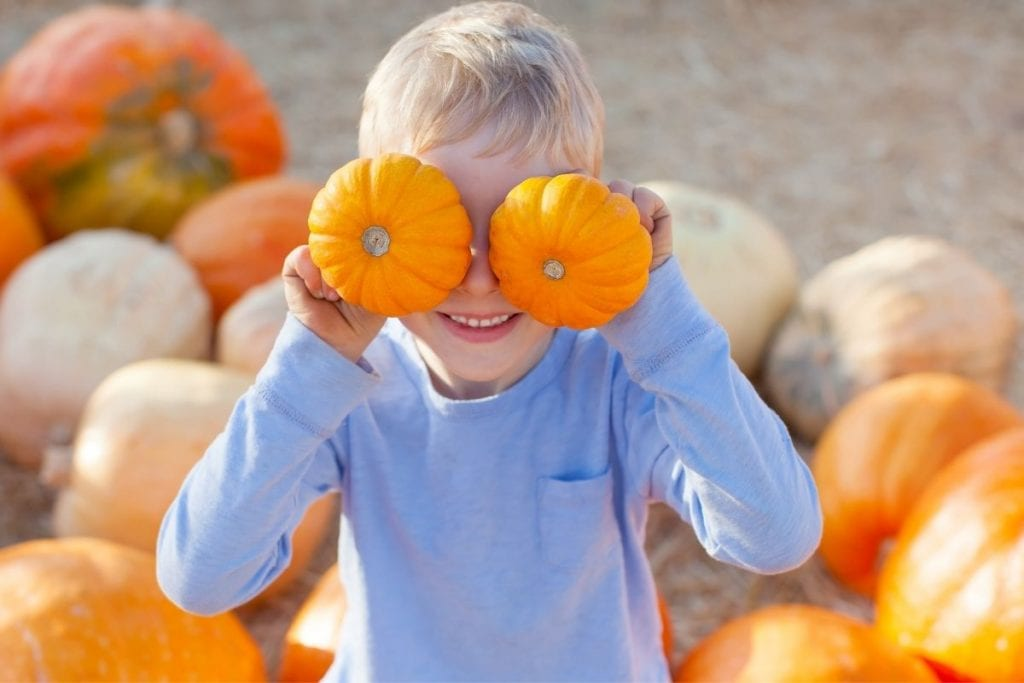 Young boy holding up to small orange pumpkins in front of his eyes while standing in a pumpkin patch near you.