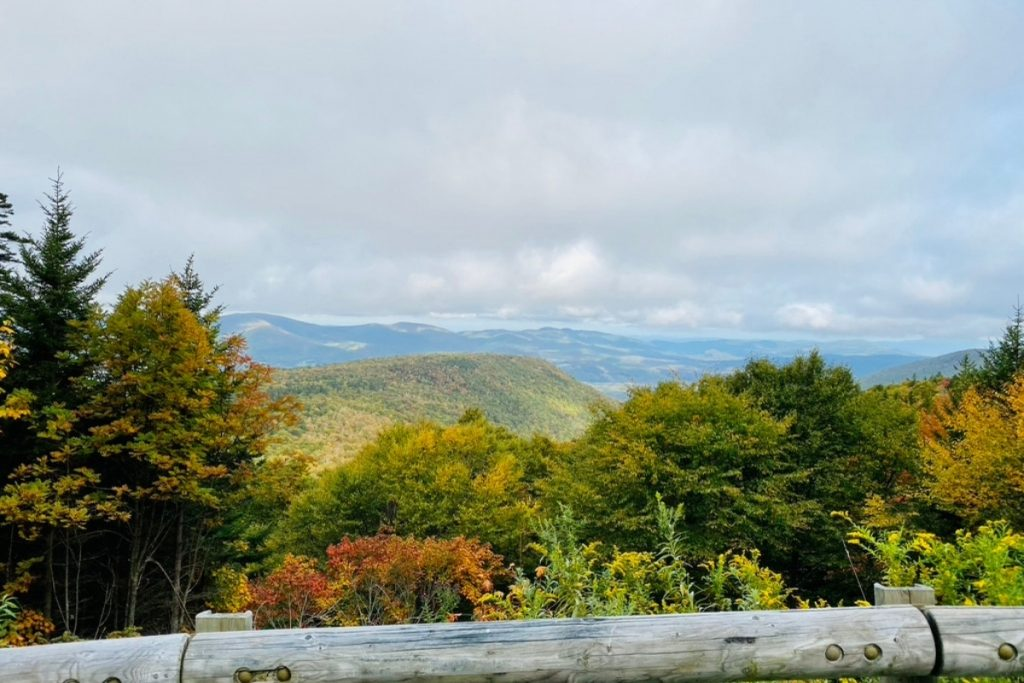 A Mountain View from an outlook on Mt Greylock with foliage trees and mountains.
