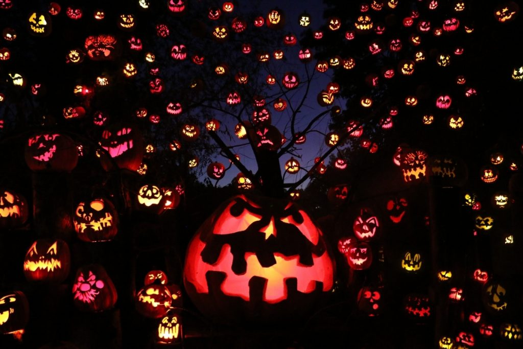 At night, a ton of spooky lit up jack-o-lantern faces on display