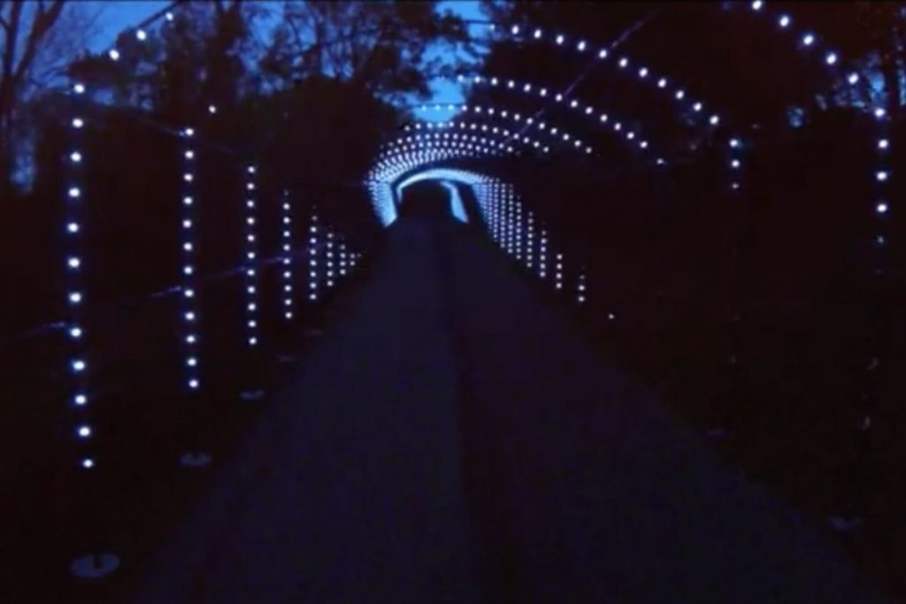 A drive-thru tunnel at night lit up for cars to drive through