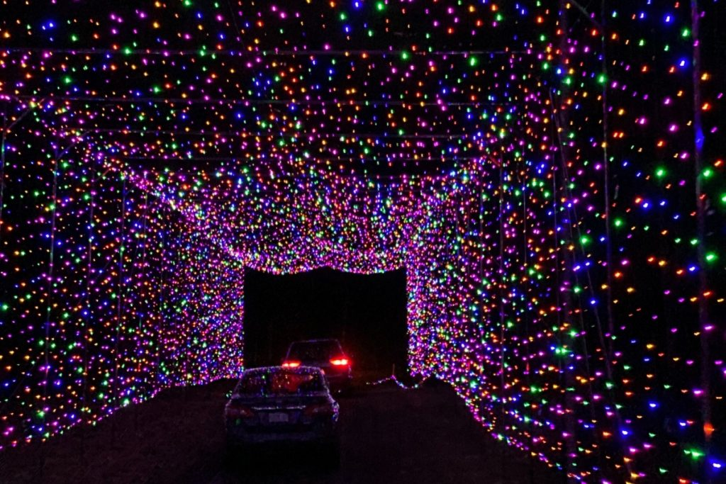 Cars driving through a holiday lit tunnel